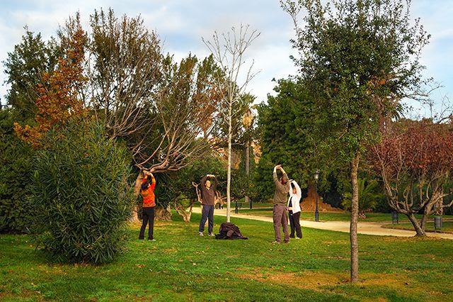 people around tree engaged in outdoor activities at Parc de la Ciutadella [enlarge]