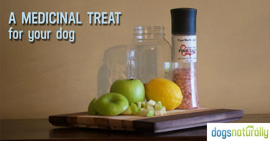 Fermented Apples: A Healthy Treat For Your Dog! - Dogs Naturally Magazine