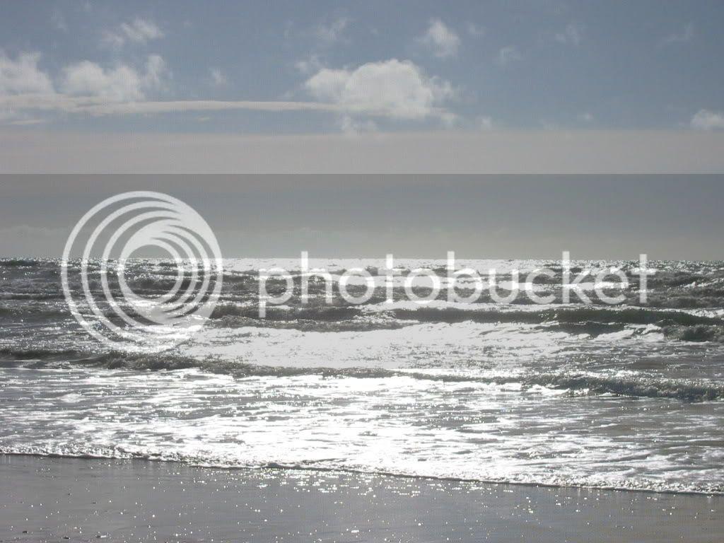 Sun-dappled surf