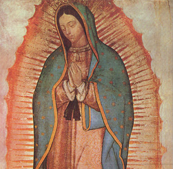 The Miracle Hunter Marian Apparitionsguadalupe