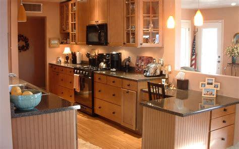 kitchen remodel ideas  kitchen design small