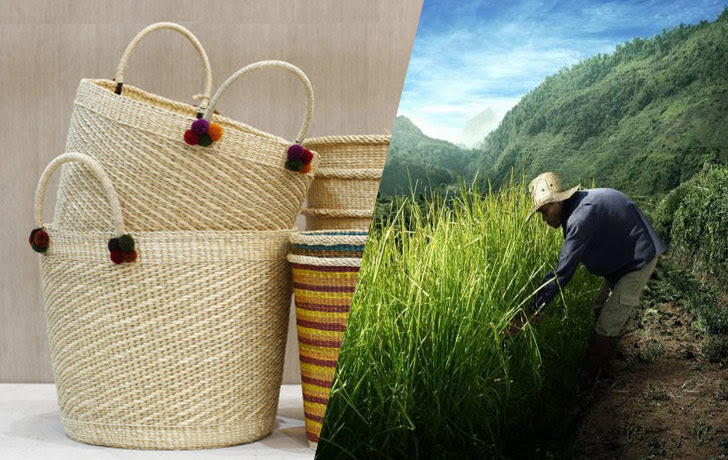 Vetiver handicraft opportunities