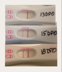Pregnancy Test Hcg Level - Pregnancy Symptoms