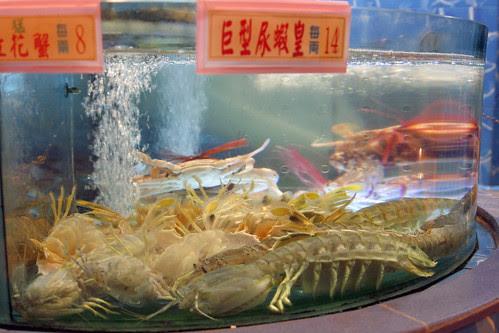 China tour '07 1906 (HK - Pissing Shrimp)