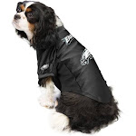 The Philadelphia Eagles | Pet Stretch Jersey | Size S | White | Little Earth