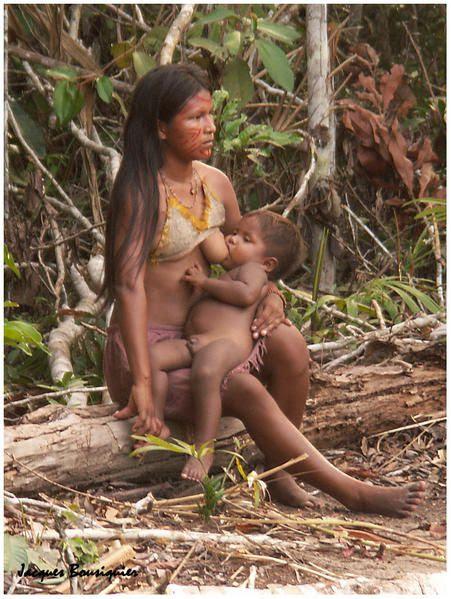 http://a398.idata.over-blog.com/451x599/1/35/79/37/BRESIL/village-indien-en-amazonie-4.jpg