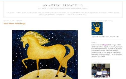An Aerial Armadillo