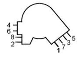 Lt1 Spark Plug Wire Diagram - Hanenhuusholli