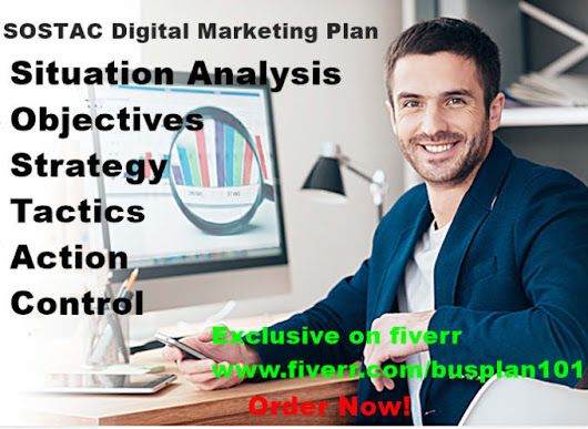 busplan101 : I will develop sostac model for digital marketing plan for $105 on www.fiverr.com