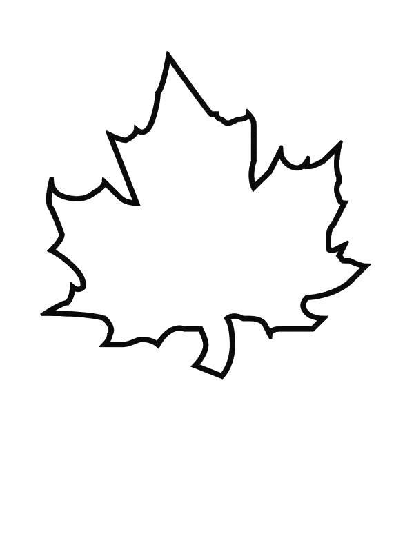 Grape Leaf Drawing Images