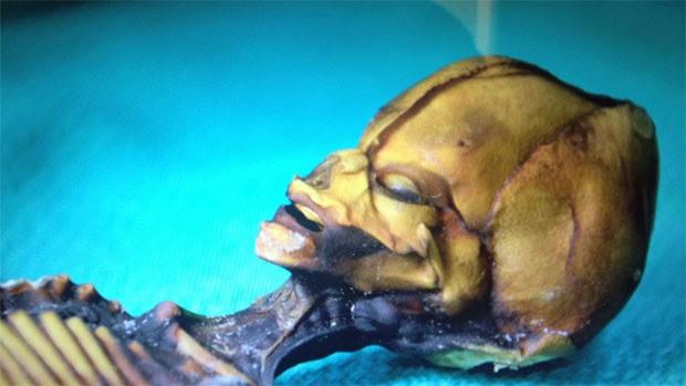Imagem do filme 'Sirius' mostra o humanoide encontrado no Chile (Foto: Divulgação/'Sirius')