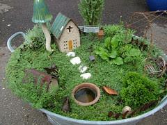 Fairy Garden 05