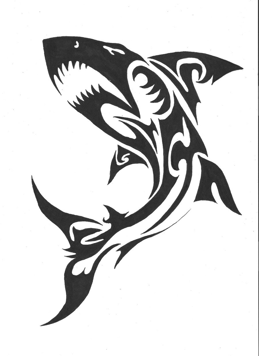 Shark Tattoo Drawing At Getdrawingscom Free For Personal Use