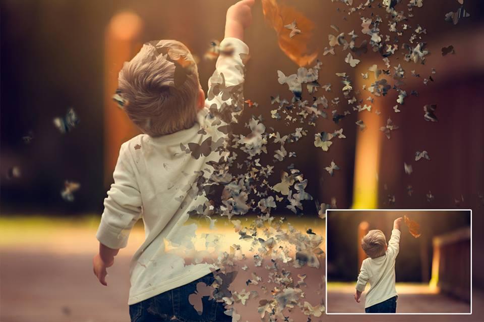 [Hướng dẫn] Làm ảnh hóa bướm bằng Photoshop CS6/CC [Hướng dẫn] Làm ảnh hóa bướm bằng Photoshop CS6/CC [Hướng dẫn] Làm ảnh hóa bướm bằng Photoshop CS6/CC [Hướng dẫn] Làm ảnh hóa bướm bằng Photoshop CS6/CC [Hướng dẫn] Làm ảnh hóa bướm bằng Photoshop CS6/CC [Hướng dẫn] Làm ảnh hóa bướm bằng Photoshop CS6/CC