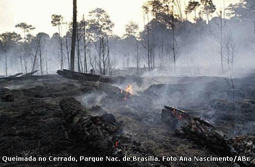 queimada