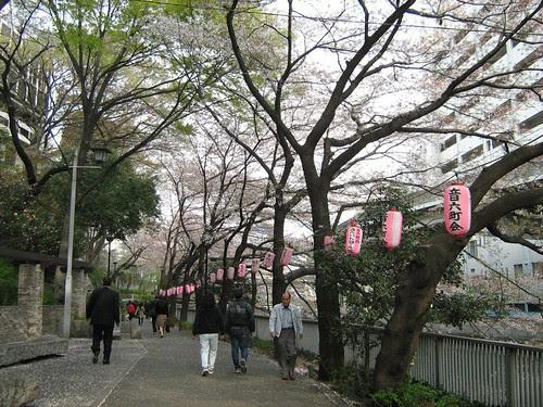 More people walking through Edogawa Park