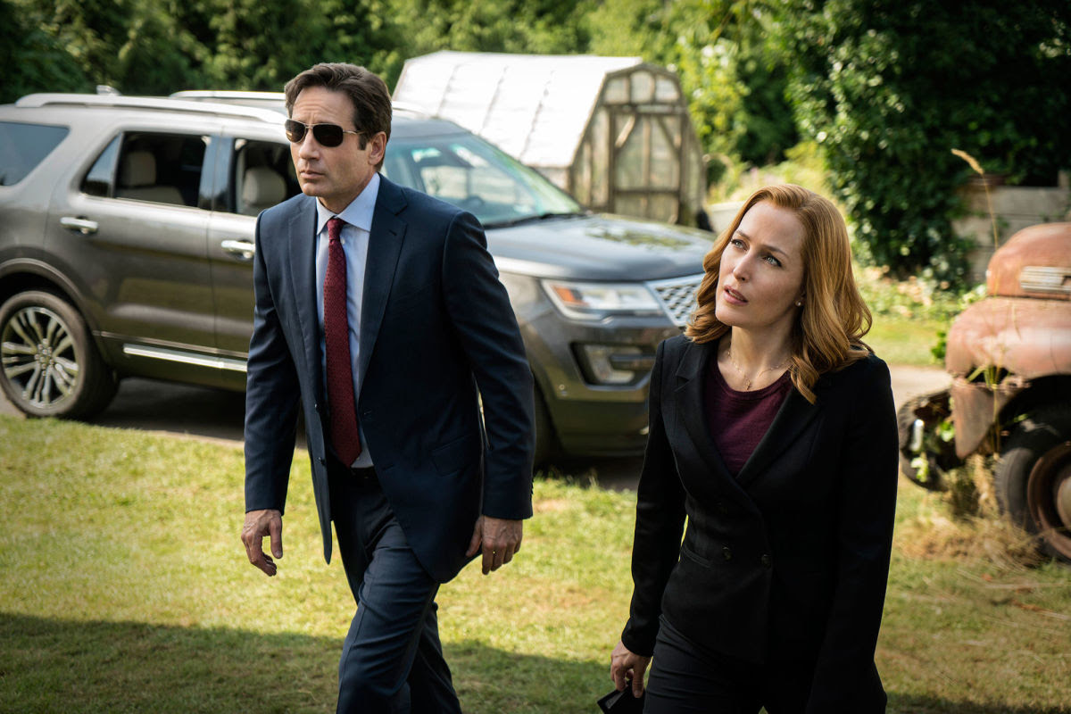 "In the recent reboot of ""The X-Files,"" mysterious cases leave Mulder (David Duchovny) and Scully (Gillian Anderson) as flummoxed and searching as ever."