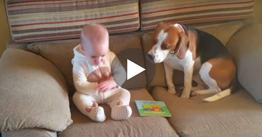 Charlie The Dog Shocked All His Family Members When He Did This… Oh My!