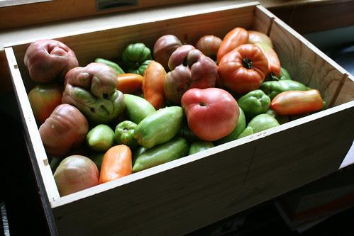 tomato box 006