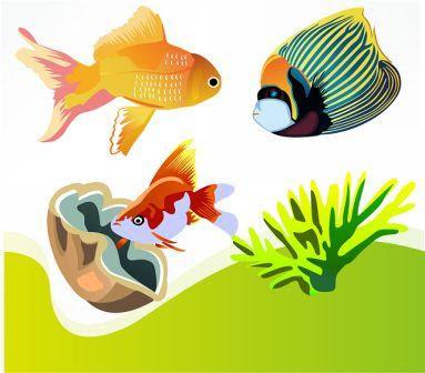 Unduh 820+ Gambar Usaha Budidaya Ikan Hias Terbaru