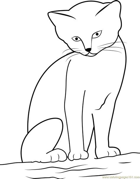 cat  cute  sitting  sand coloring page