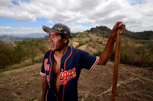 Climate change to strike at the heart of Central America's bean lands