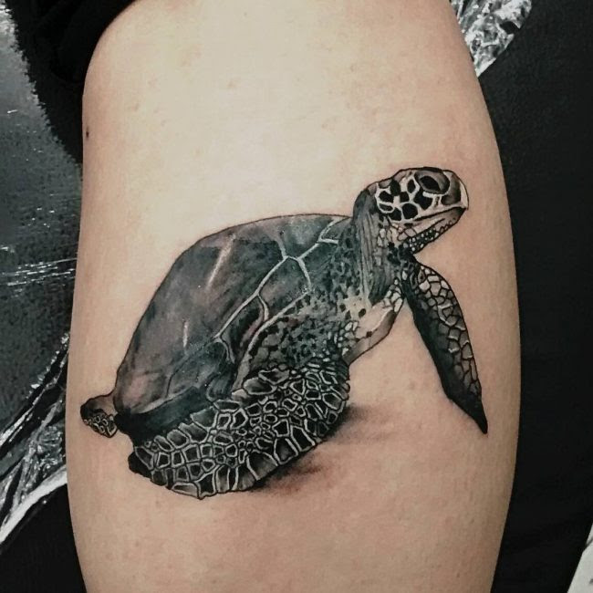50 Delightful Turtle Tattoo Ideas - The Way to Express ...