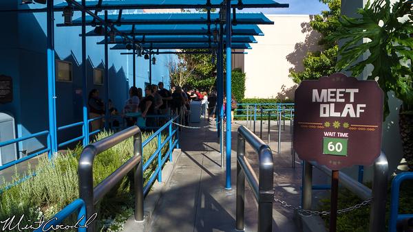 Disneyland Resort, Olaf, Meet, Greet, Disney California Adventure, Frozen, Fun