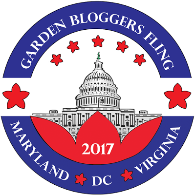 The Garden Bloggers Fling | angiethefreckledrose.com