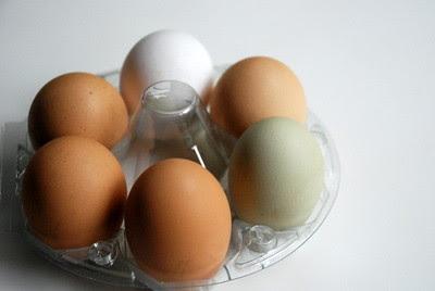 Heirloom Eggs