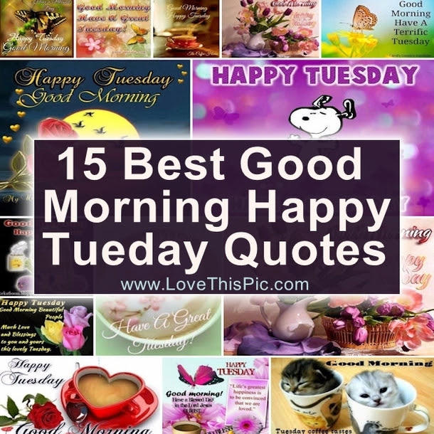 15 Best Good Morning Happy Tuesday Quotes