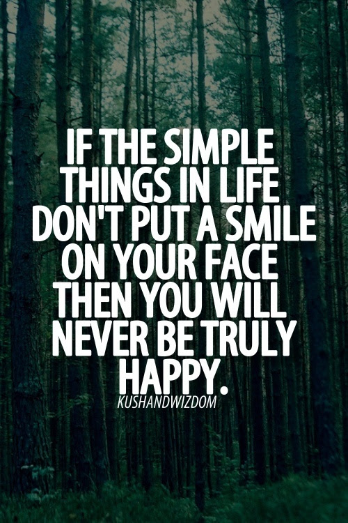 Quotes About Simple Things In Life 73 Quotes