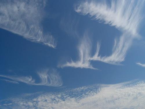 Dragon-clouds
