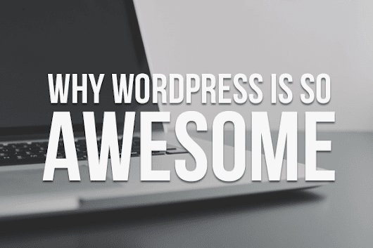 Why WordPress is so Awesome | Kite Media Blog
