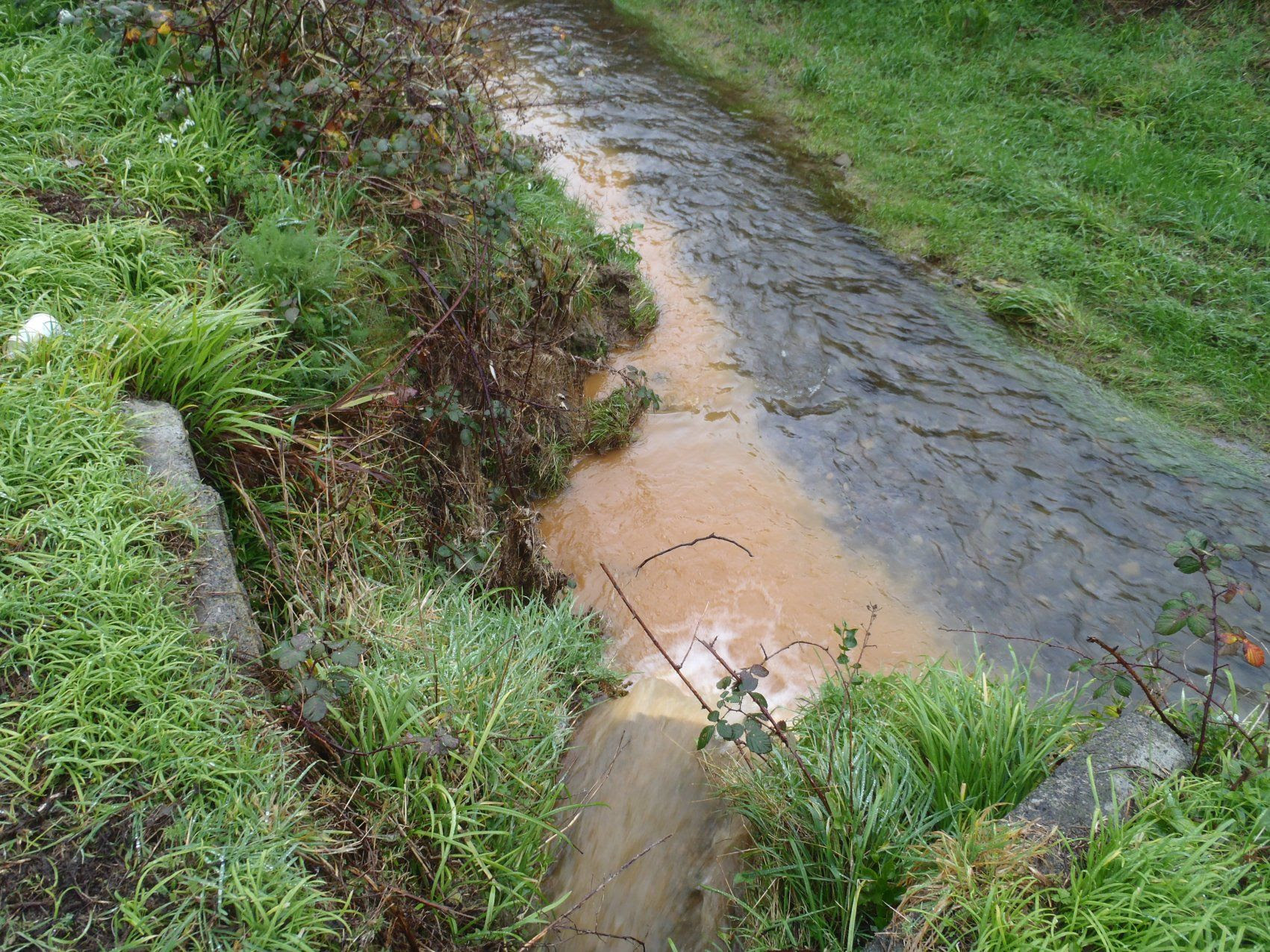 Image result for stream pollution
