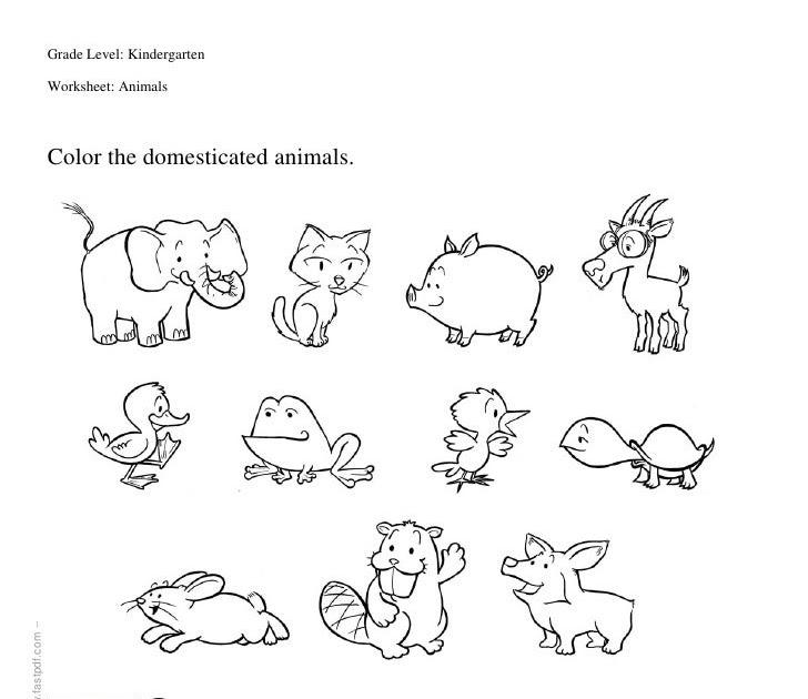 37 WORKSHEETS FOR KINDERGARTEN ON WILD ANIMALS, ANIMALS
