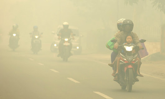 Indonesia burning: forest fires predicted to be worst on record | World news | The Guardian