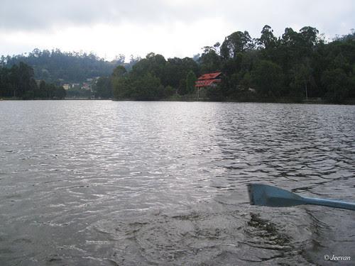 Oat at lake