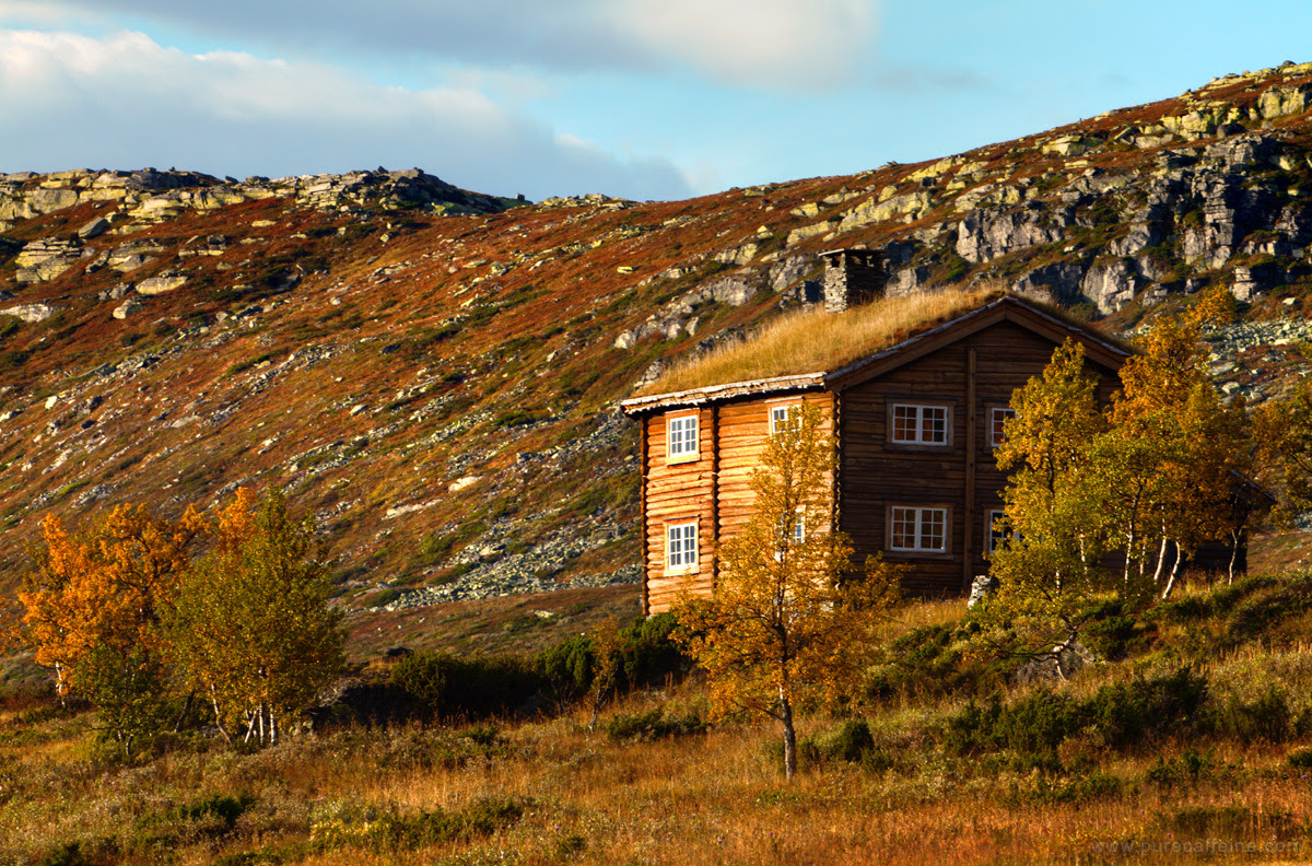 Alpine winter cabin in Norway Taken in early Autumn as the birch trees turn beautiful shades of yellow and red — the best time of the year! Yet all these cabins are empty. Submitted by Nathanael
