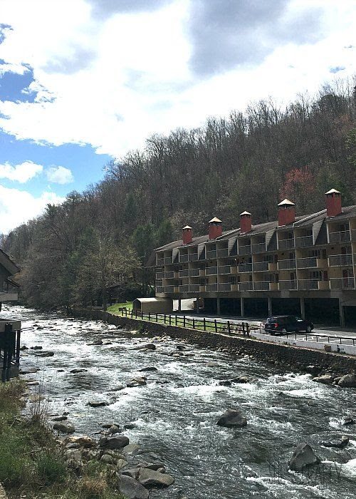 spring, gatlinburg, trees, mountains,vacation, spring break, family