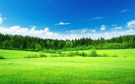 Green Field Image 4066   HDWPro