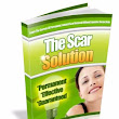 The Scar Solution Book Sean Lowry PDF Free Download