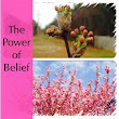 The Power Of Belief | Life Learning Today