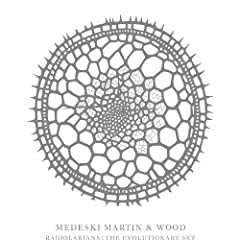 Medeski, Martin and Wood Radiolarians - The Evolution Set cover
