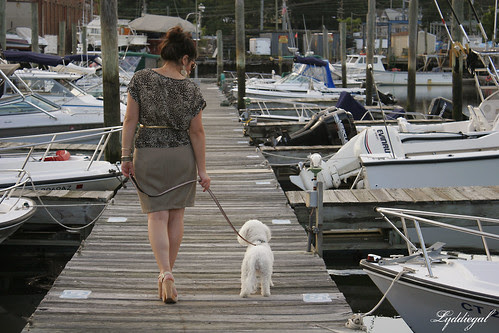 Lyd Docks
