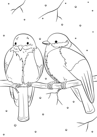 Birds Pictures For Coloring