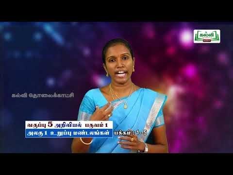5th Sciece உறுப்பு மண்டலங்கள் அலகு 1 Kalvi TV