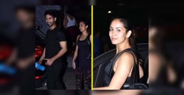 Shahid Kapoor's wife Mira Rajput slammed by the netizens for leaving Puppy at home