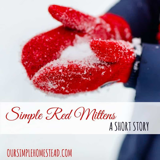 Amish Short Story - Simple Red Mittens