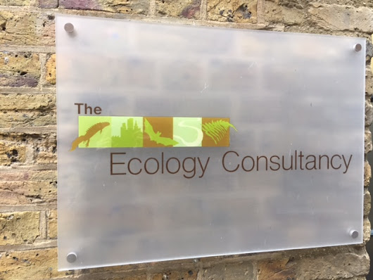 Project Officer (Regions) - Lewes, Sussex - The Ecology Consultancy